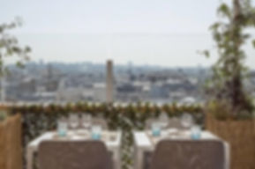 jardins sur terrasse Paris