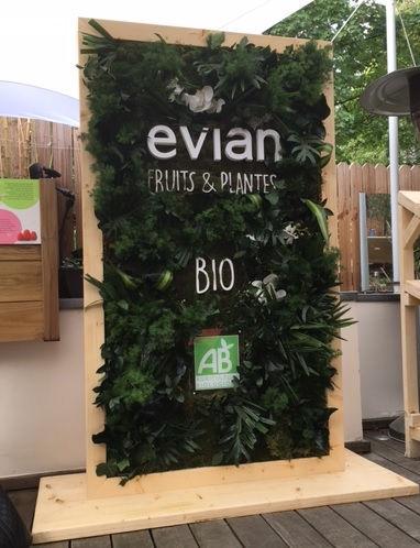 tableau végétal,tableau végétal stabilisé,tableau végétal artificiel,tableau végétal en location
