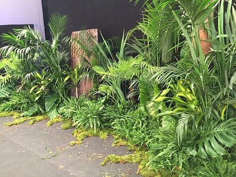 décor de jungle Paris