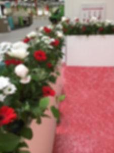 fleurs rouges et blanches