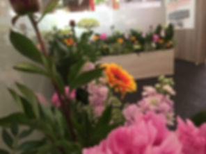 fleurs coupées pour salons