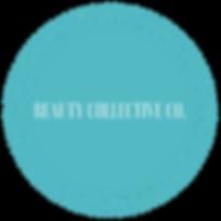 Copy of Copy of DEZI VBeauty Artistry.pn