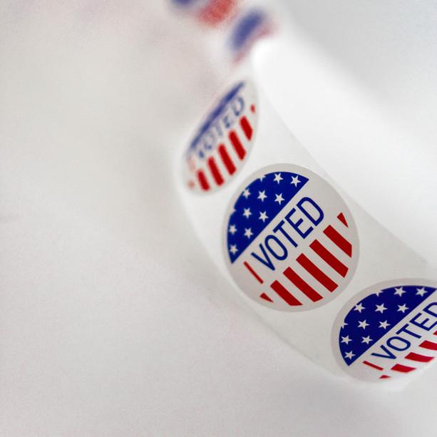 Early Voting Behaviour