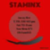STAMINX.png