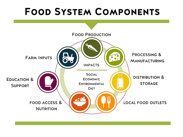 Food System Components.png