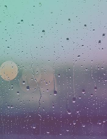 RainWebsite.png