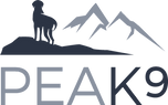 Peak9 logo B NO LINE version_edited.png