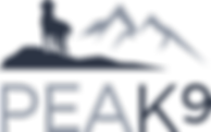 Peak9 logo B NO LINE version_edited.png
