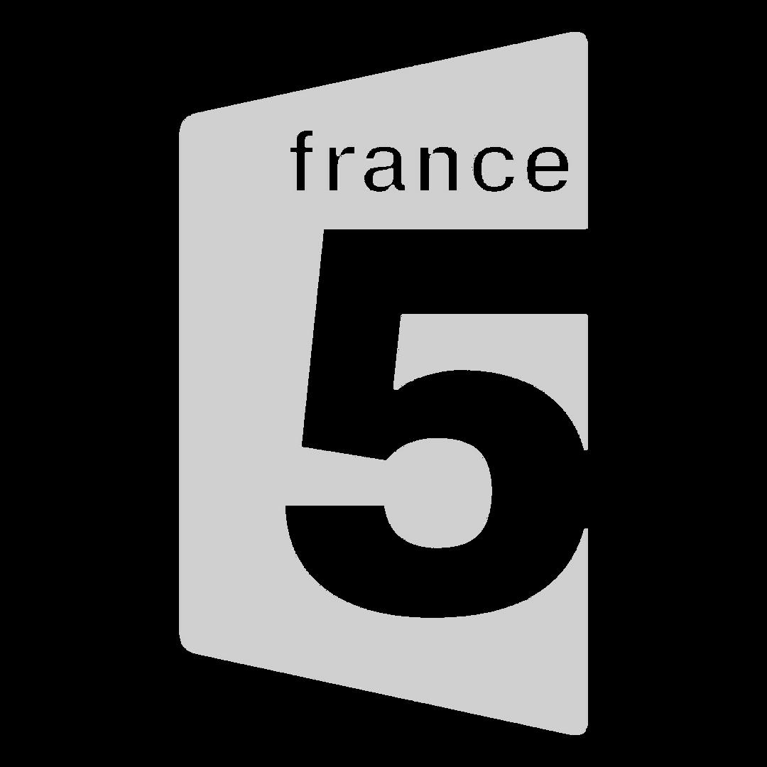 france-5-tv-logo-png-transparent_edited.