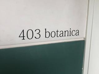 3(san)洋装店 403 atelier     4/13 オープン