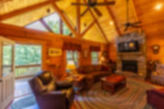 living room June 2019.jpg