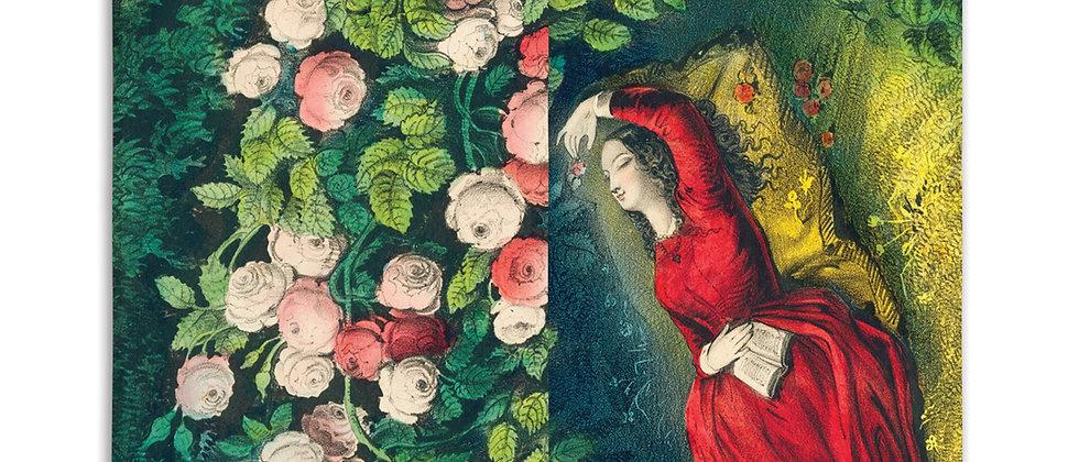 John Derian Sleeping Beauty Matches