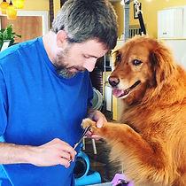 Barking Beauty Parlor Nail Grooming