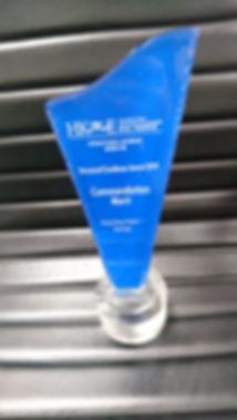 Award - Blue House_3.JPG
