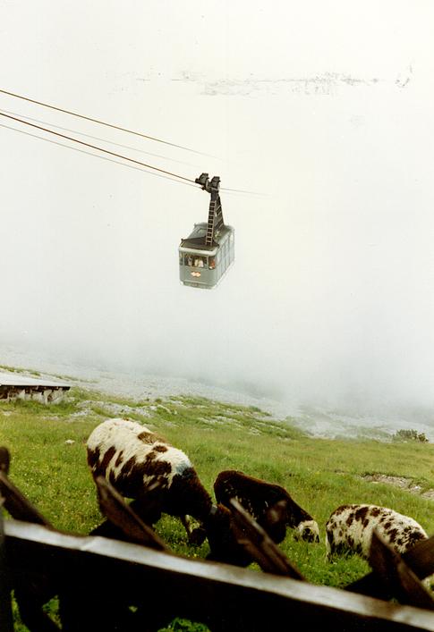 Innsbruck 1991