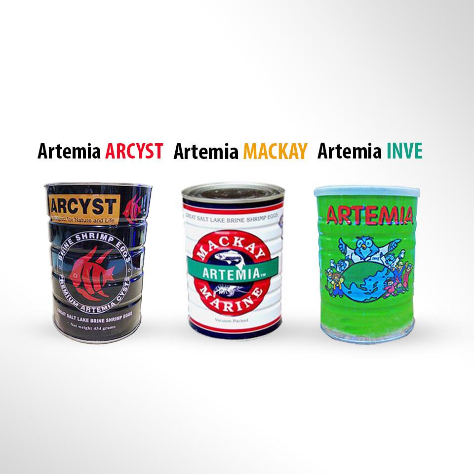 jual Artemia