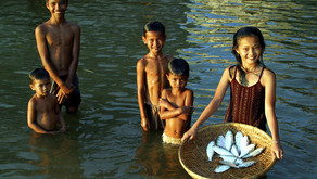 Mengontrol Kadar Ammonia dalam Budidaya Perikanan