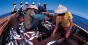 KKP Susun Anggaran untuk Ganti Alat Tangkap Nelayan yang Ramah Lingkungan