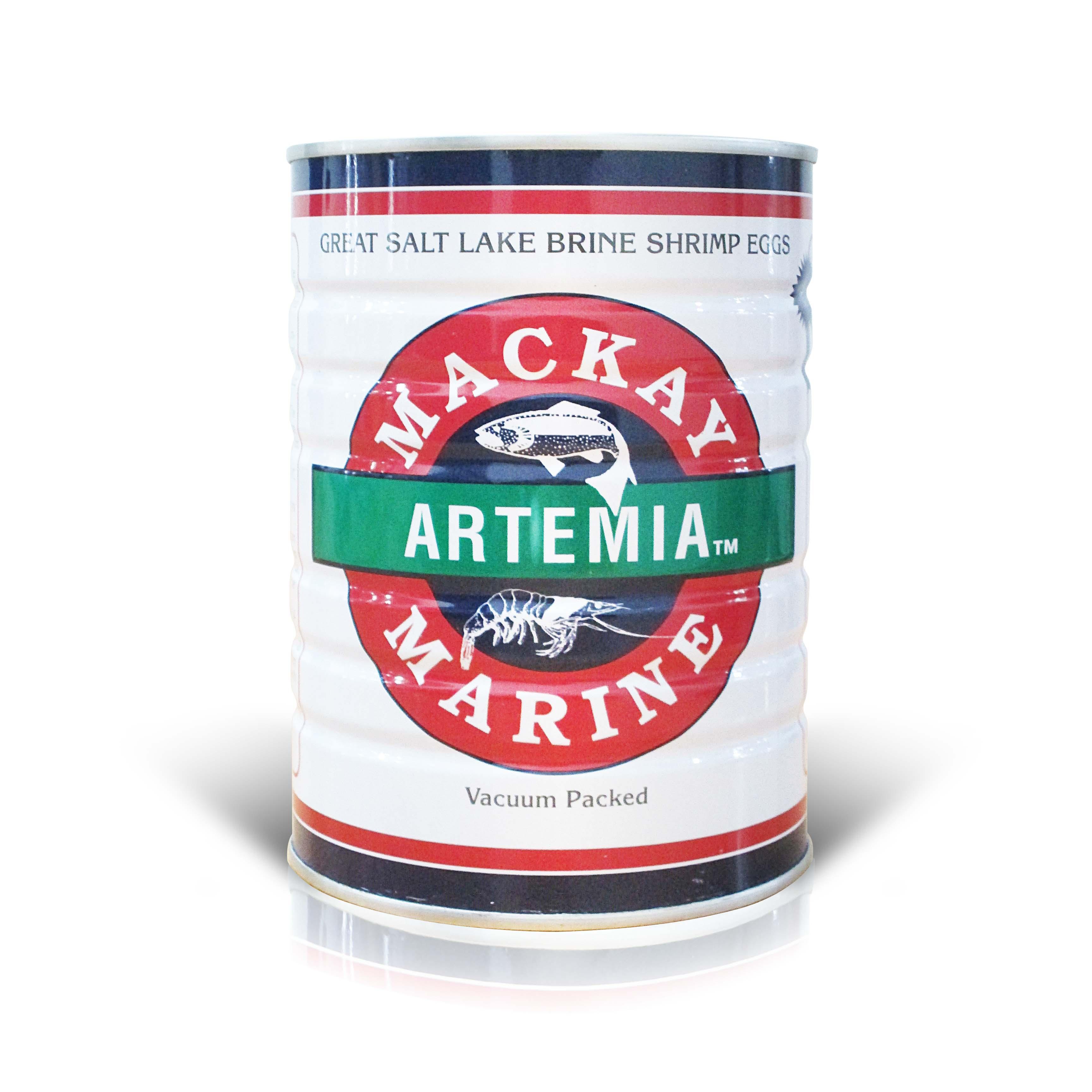 Artemia Mackay Putih