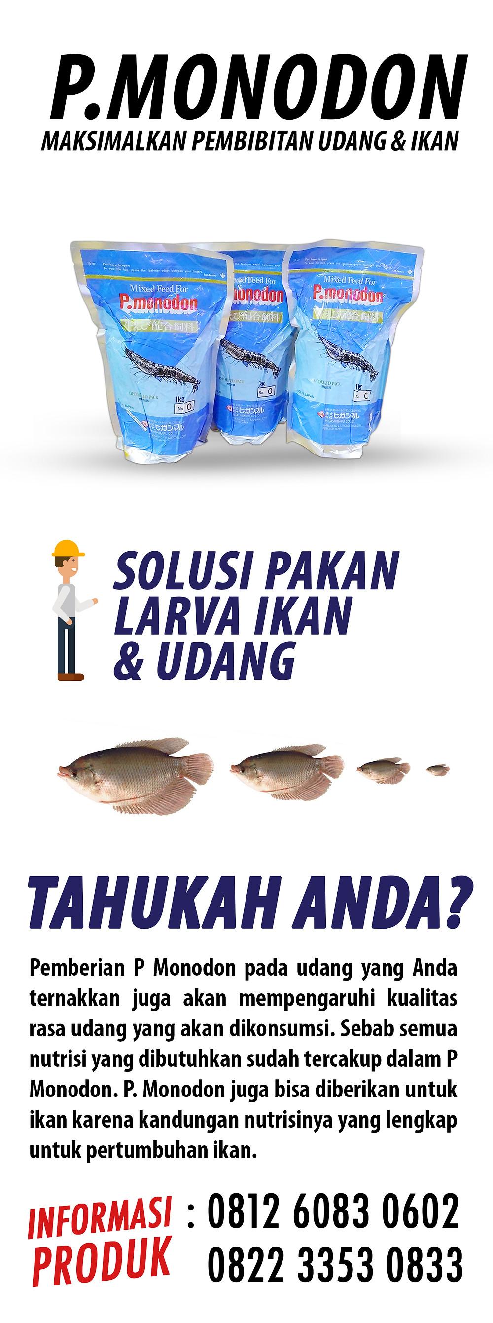 solusi pakan udang ikan