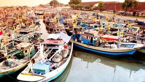 Menteri Susi Pastikan Bantuan 2.833 Kapal Perikanan Disalurkan Tahun Depan