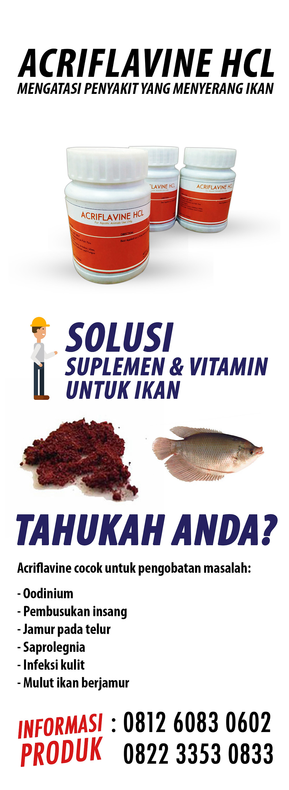jual obat insang ikan