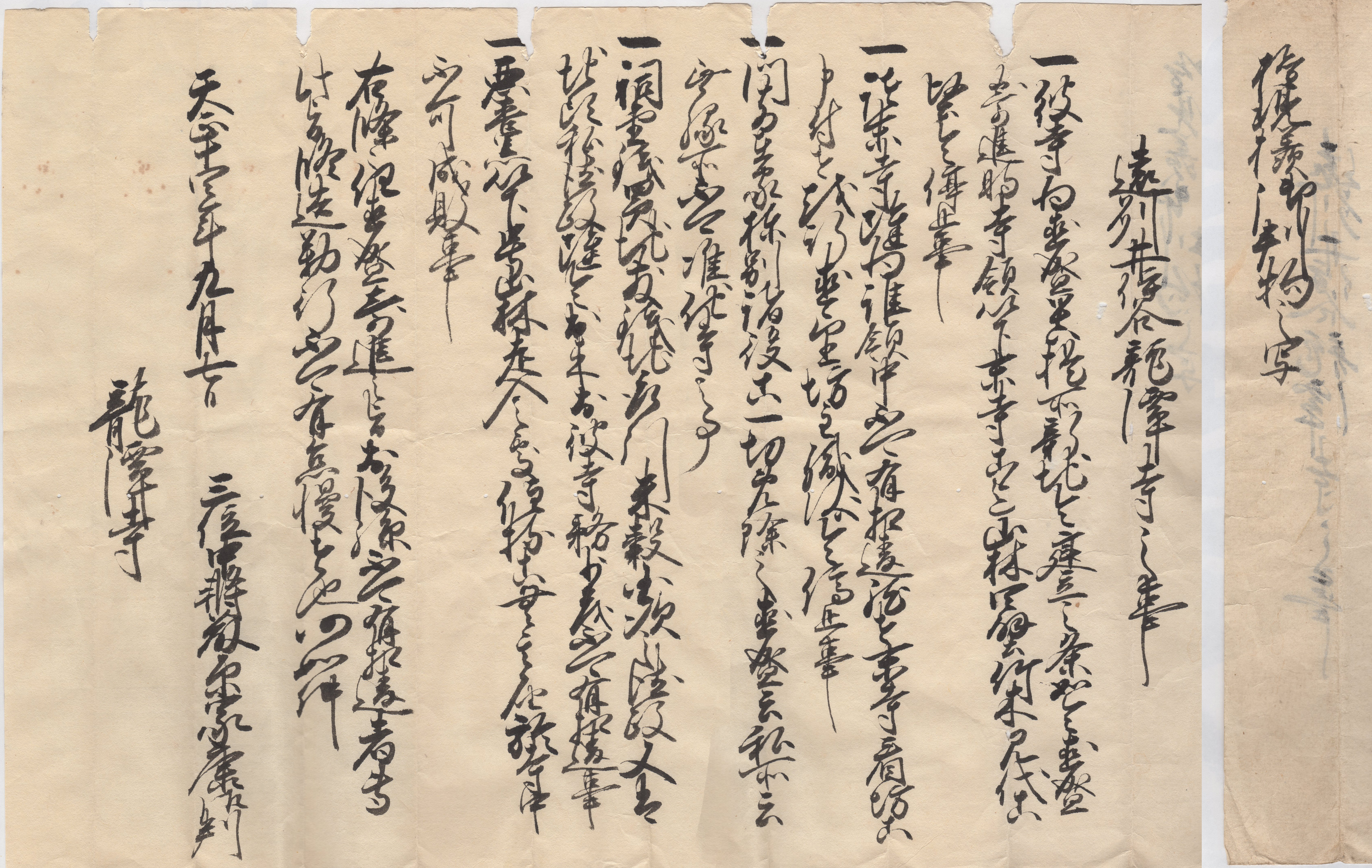 徳川家康判物(写)(井伊家本)