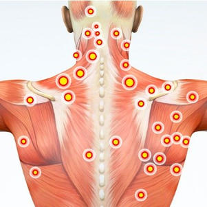 Bodies of Liquid Light: An Intro to Myofascial Release
