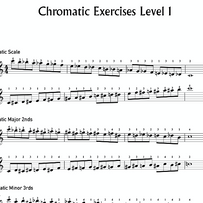 Chromatic Exersizes