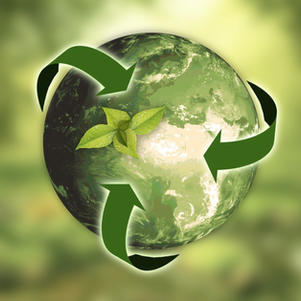 Everyday Sustainability: Considering the Cost of The Environment