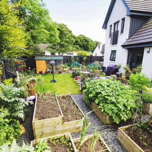 Small-Scale Homesteading, Gardening, and Ecosystem Design