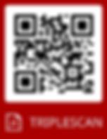 ATOS_TripleScan.png