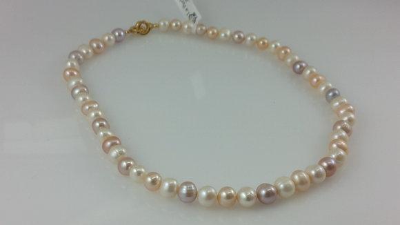Collar 1150 C23