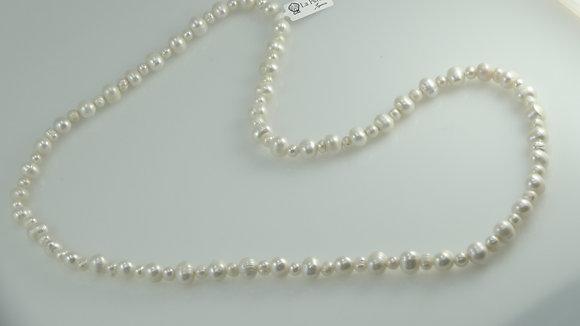 Collar 1100 C7