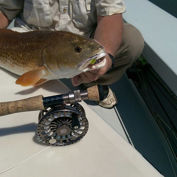 #Redfish