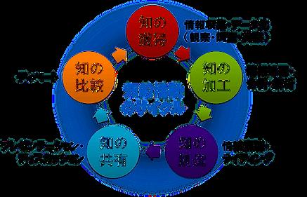 wisdomactivitycycle.png