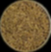 ImageGen-1.png