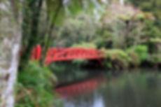 pukekera park bridge