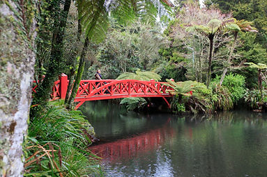 pukekera park bridge