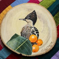 Heart Spotted Woodpecker
