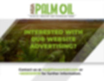 Palm Oil Website-02.jpg