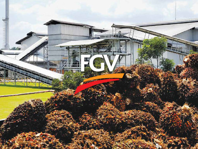 MCO: FGV ceases ops at five palm oil mills in Sabah's Sahabat region