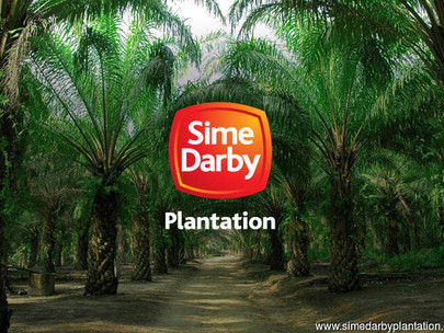 Sime Darby Plantation's Rare Invite to Malaysians to Become Harvesters as Foreign Worker Hiring Free