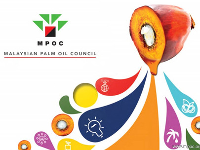 Palm Oil: Sumwin Offers Technology to Mitigate Harmful Chemical Compounds