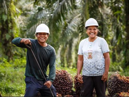 Rantai Pasok Terintegrasi Kunci Utama untuk Meningkatkan Produktivitas dan Mata Pencaharian Petani