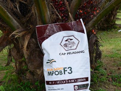 MPOB researchers innovate fertiliser formulation that can raise oil palm yield