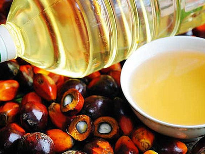Debunking myths on palm oil
