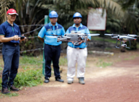 Drones that do the work of 500 farmers are transforming palm oil