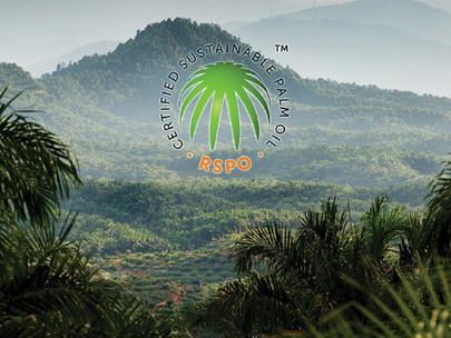 RSPO Mengatakan Bahwa Kriterianya Merupakan Salah Satu yang Terketat di Dunia Terkait Deforestasi