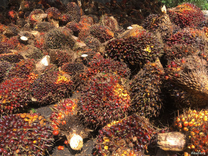 MPOB develops cost-effective palm-based lassi